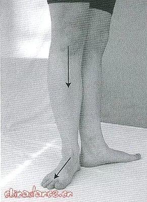 艺术体操训练对少儿体型体质的影响插图(13)